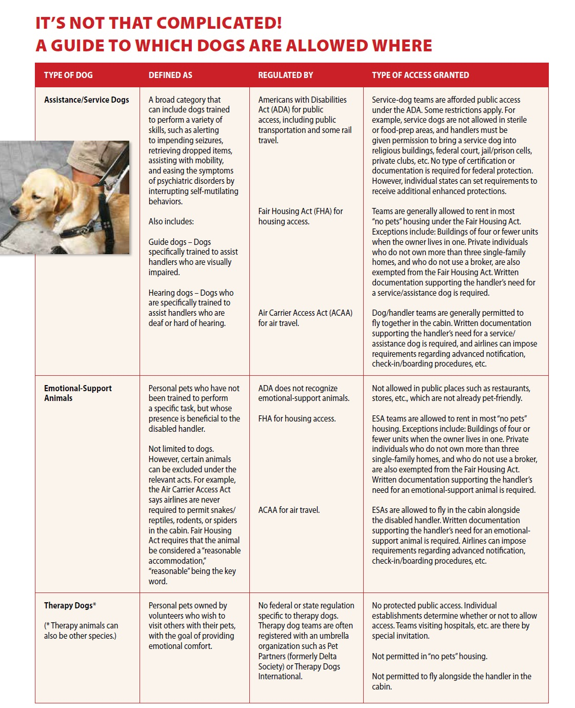 Service Dogs And People With Real Disabilities