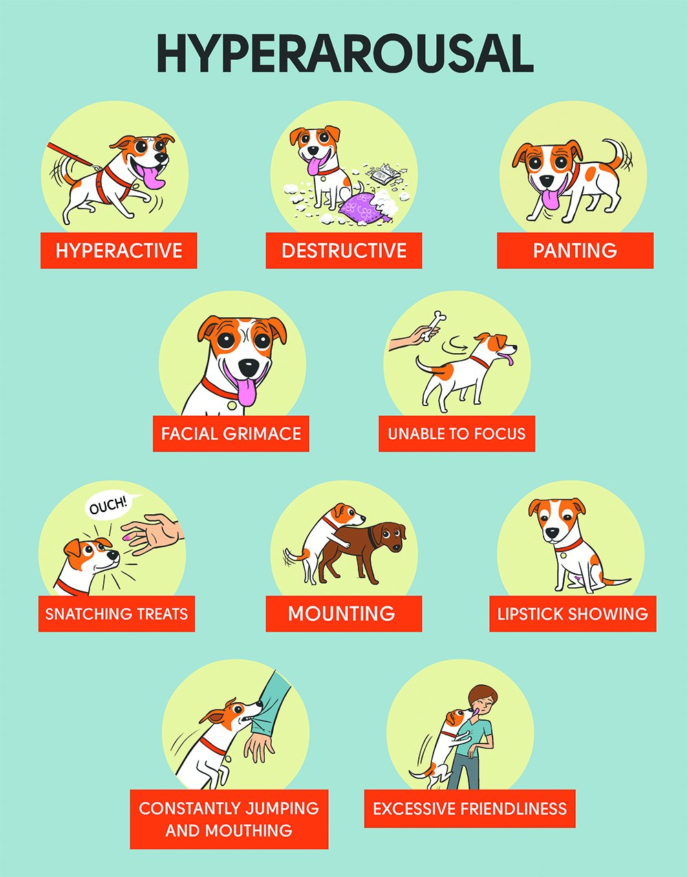 dog overarousal chart