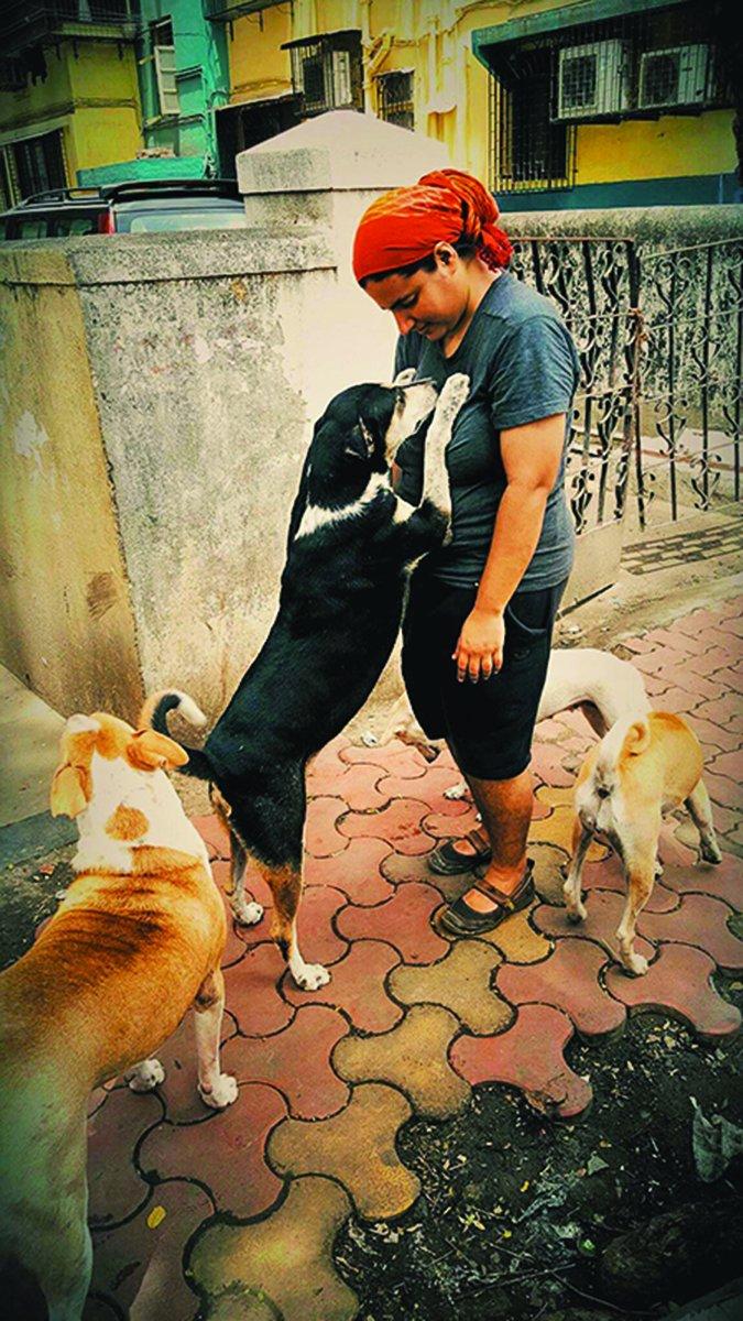 mumbai street dogs