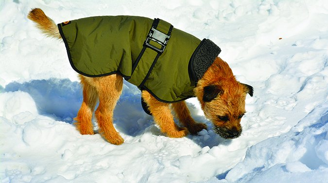 Muttluk Belted Coat