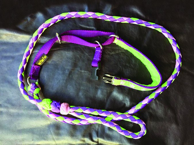 four paw fun martingale all-in-one