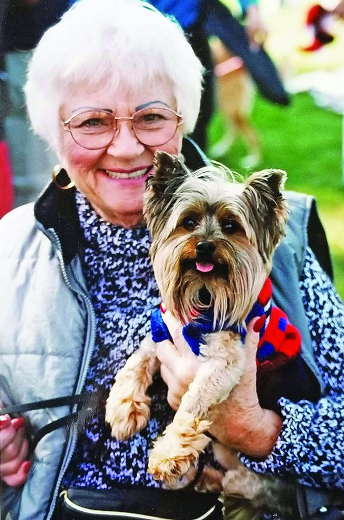 dogs for senior citizens