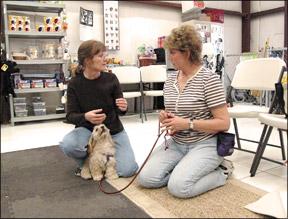 Dog Training Professionals