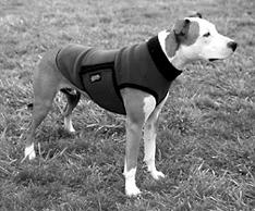 Snuggy winter dog coat