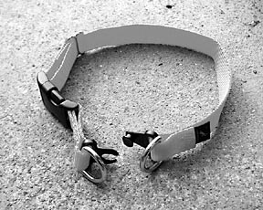 breakable dog collar
