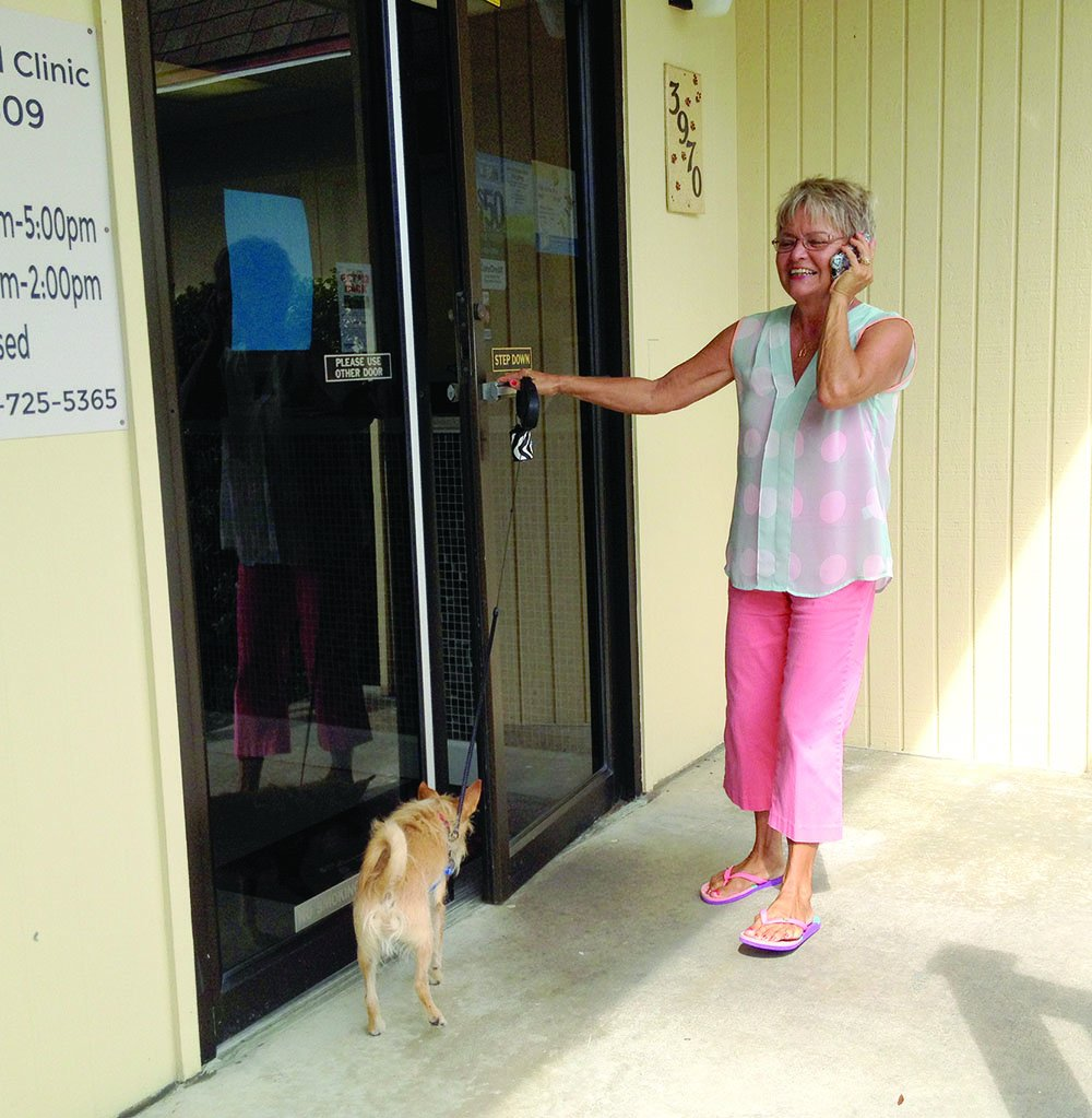 flexi dog leash and cell phone at door
