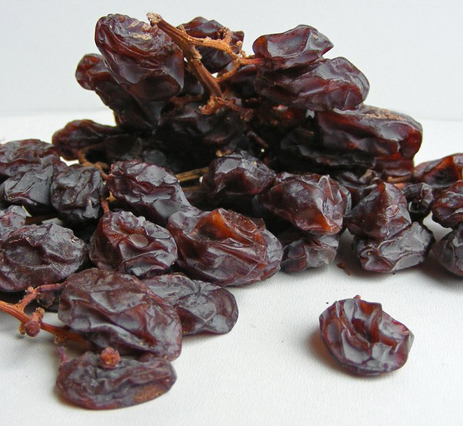 raisins and grapes are toxic to dogs