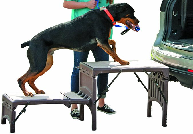Pet Gear Free Standing Foldable 2-Step Pet Stair
