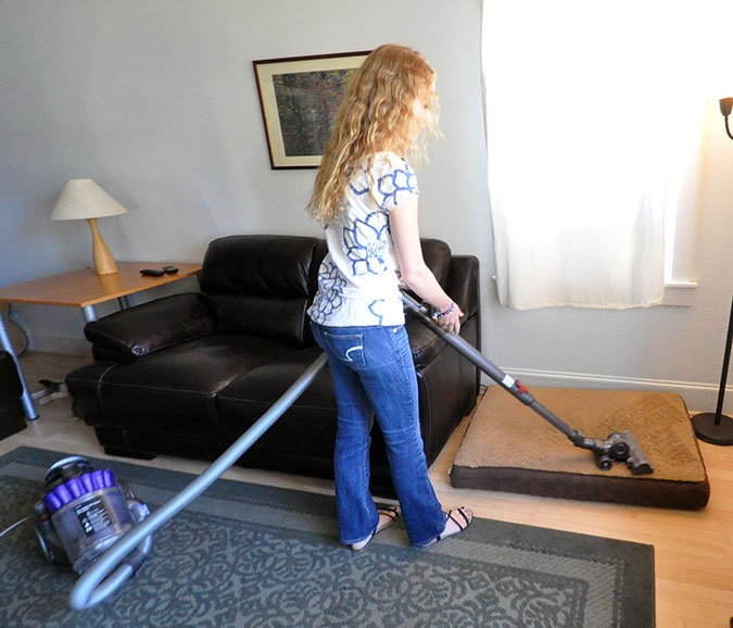 vacuuming for fleas