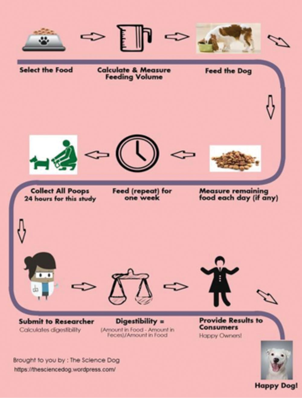 dog food digestibility infographic