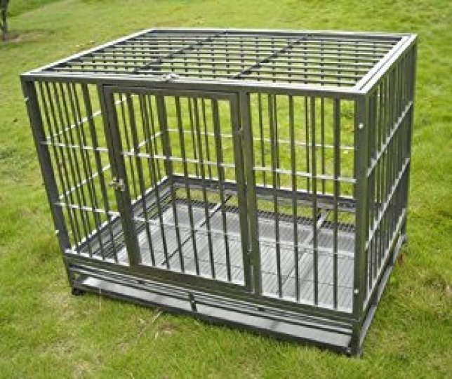 bestpet professional heavy duty dog crate