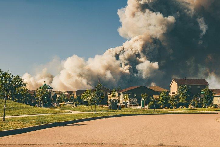 suburban wildfire