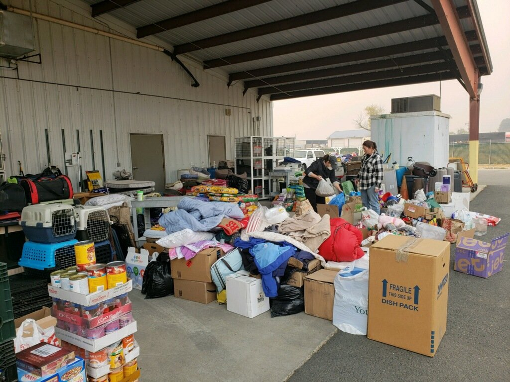 animal shelter daily donation camp fire