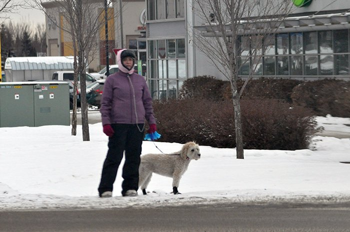 outside walks in winter