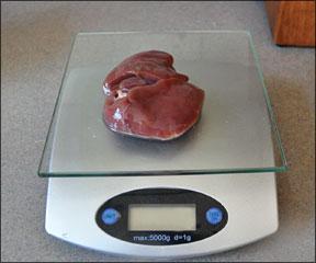 Home-Prepared Diet