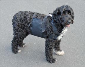 RPCM Cooling Vest