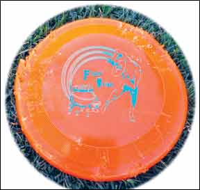 Best Frisbee Disc for Dogs