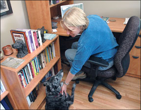 Building a Healthy Relationship With Your Dog