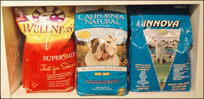 Dogs With Special Dietary Needs