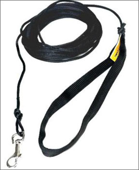 Extended Leash