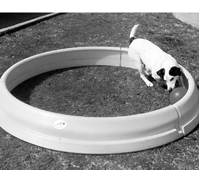 The Tools That Make Dog Training a Breeze