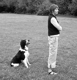 Dog Training Advice