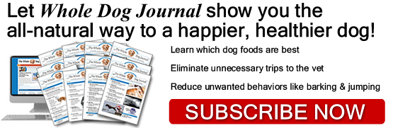 Subscribe to Whole Dog Journal