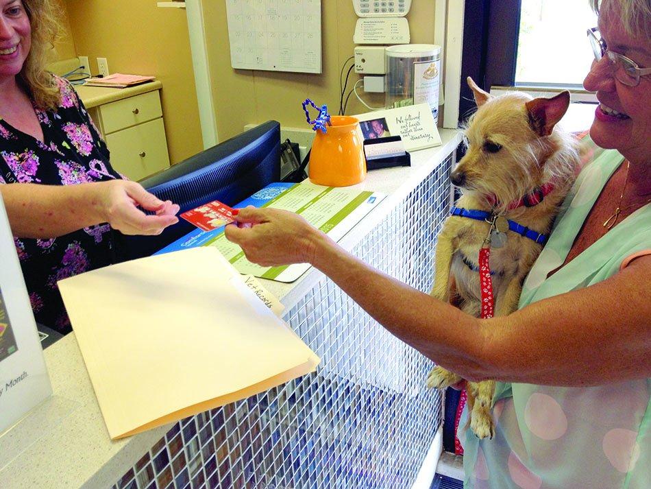 using credit card at vet clinic