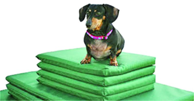 Alden Odor's Posture Pedic mats