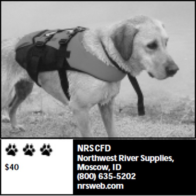 Northwest River Supplies dog life jacket