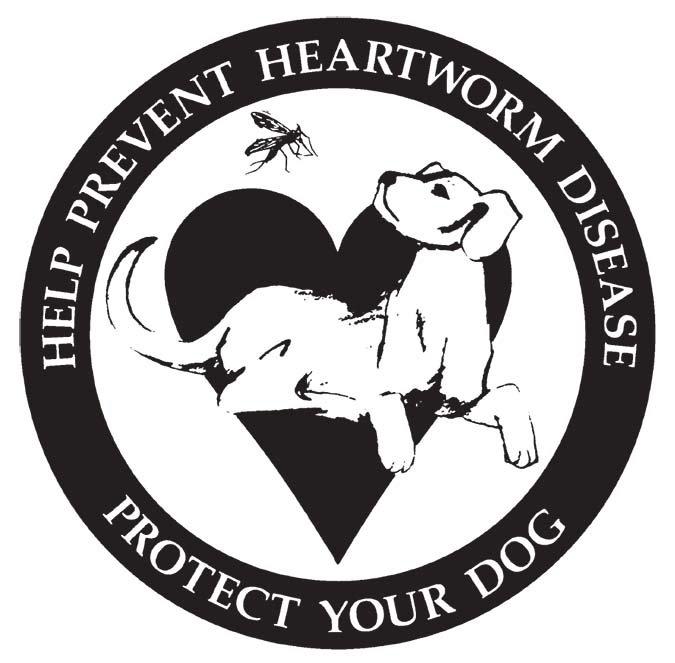 Treating Heartworm Holistically - Whole Dog Journal