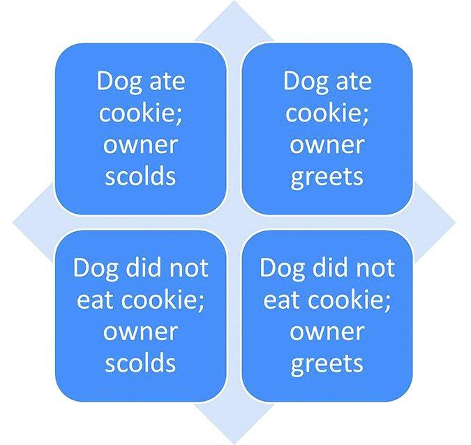 guilty dog scenarios