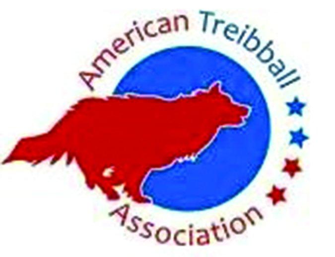 American Treiball Association