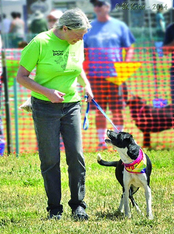 Santa Cruz Dog Training Club