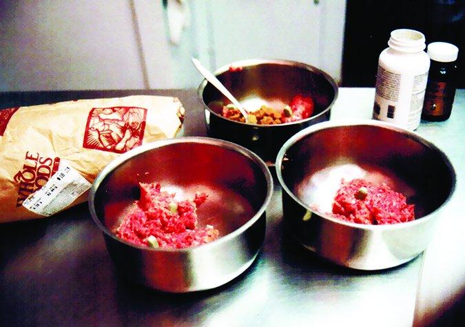 home-prepared dog food