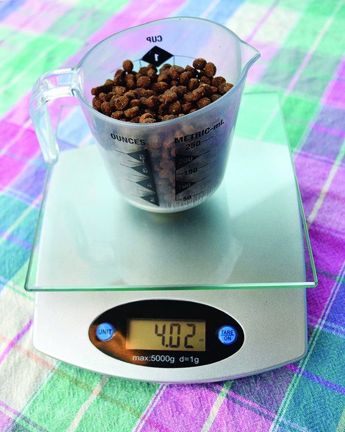 weighing dog food