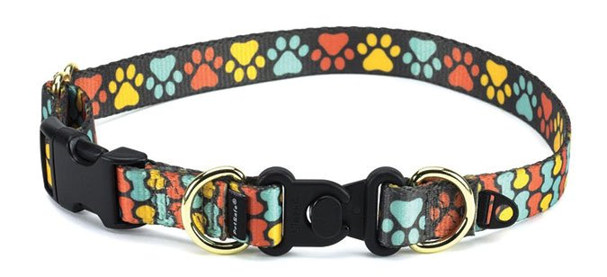 KeepSafe Break-Away Safety Collar from Petsafe