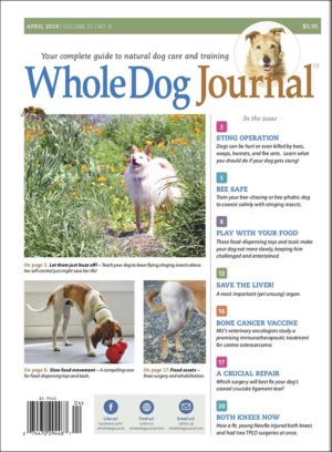 The Whole Dog Journals Guide to Optimum Dog Care: Mending His Ways