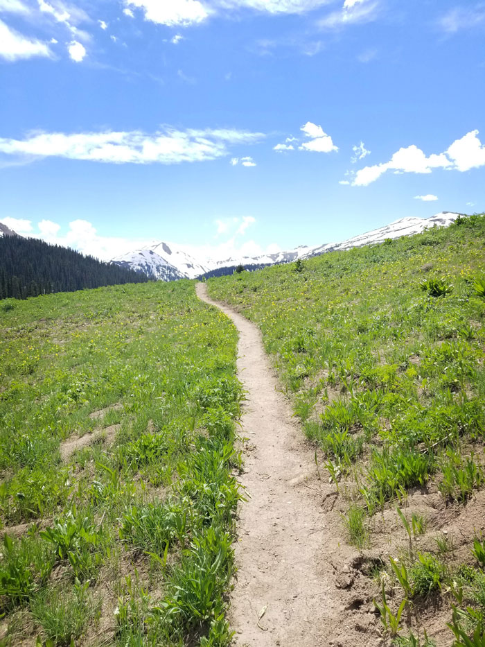 Hiking path in Colorado