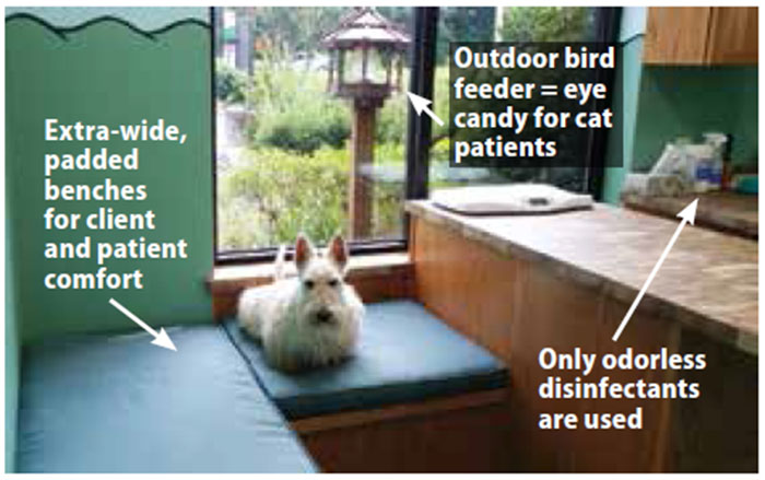 Fear Free Veterinary Care