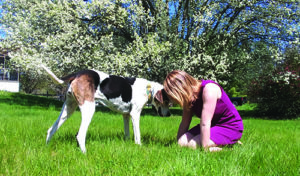 The Play Way for Shy and Fearful Dogs