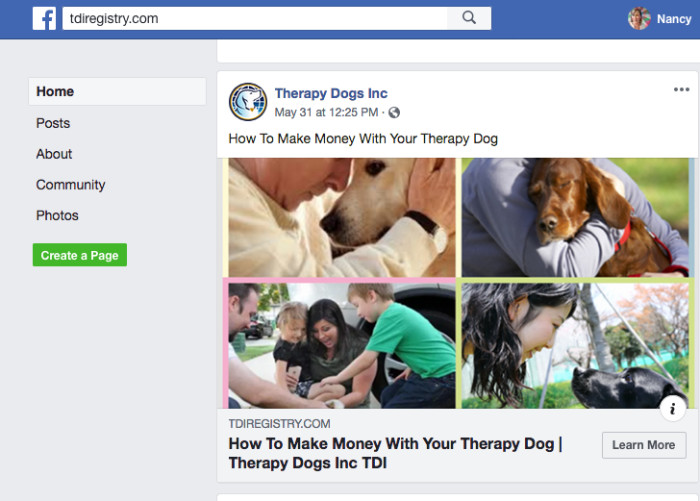 Volunteering with a therapy dog? Look out for fake registries.