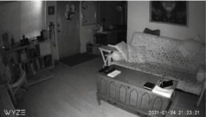 Wireless Dog Camera Review