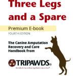 Taking Care of Three Legged Dogs