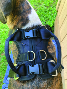 Dog Car Harnesses Review