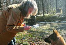 positive reinforcement dog training