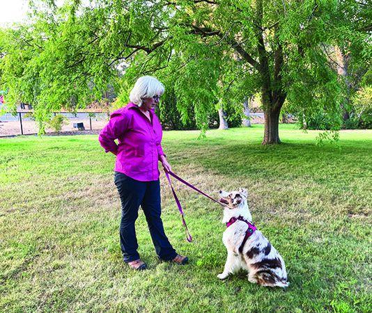 leash pressure dog training